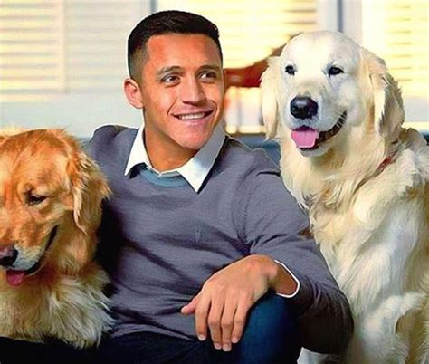 alexis sanchez dogs banner atom and humber arsenal fans raise 163 500 to produce banner