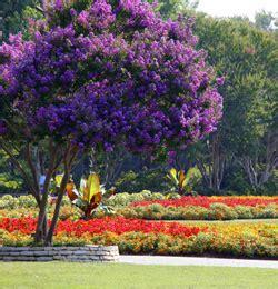 Botanic Garden Dallas Dallas Arboretum Botanical Garden Dallas Parks Tx Official Website
