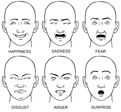 faces how to draw heads features expressions academy tips for drawing expressive faces why so serious
