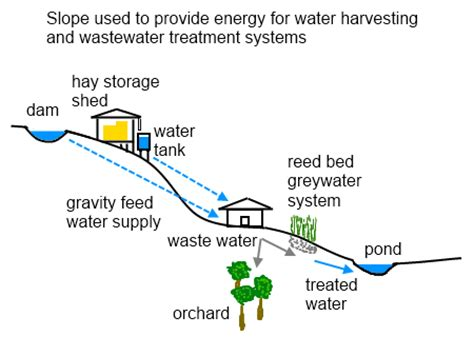 Layout Of Gravity Water Supply System | liliana usvat reforestation and medicinal use of the