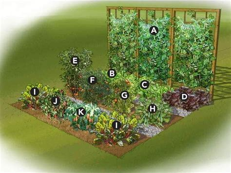 Garden Layouts For Vegetables 25 Best Ideas About Small Vegetable Gardens On Vegetable Garden Layout Planner