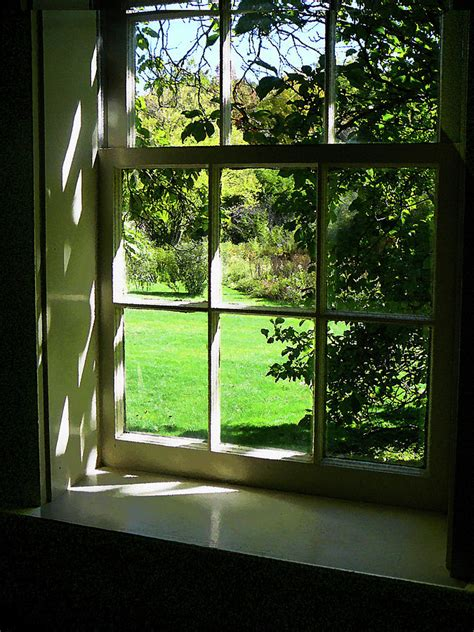 The Widow summer day through the window photograph by susan savad