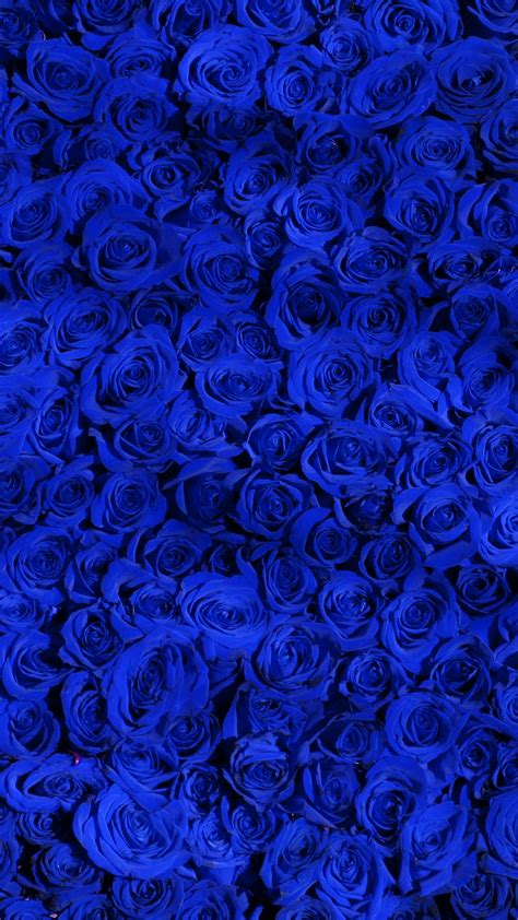 papersco iphone wallpaper vo rose blue pattern