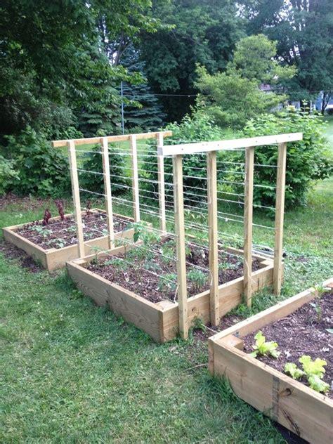 Tomato Garden Ideas My Tomato Trellis Homesteading Dreams Tomato Trellis Gardens And Garden Ideas