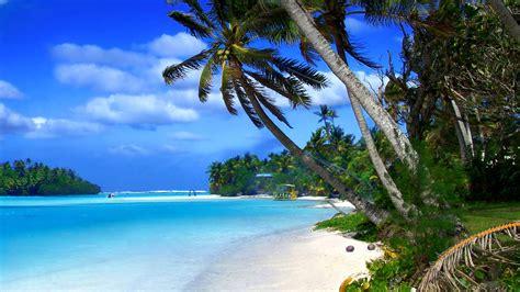 tropical landscape of cayman islands tropical landscape blue