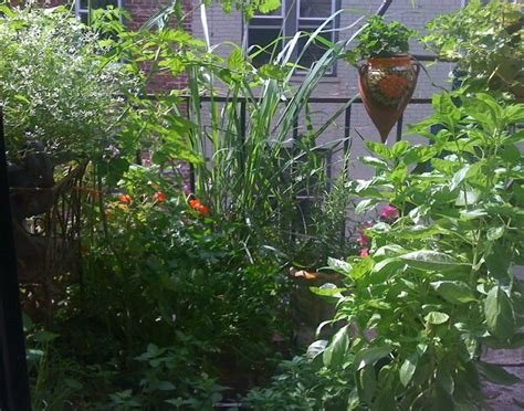 Gardening Escapists 17 Best Images About Garden Inspiration On