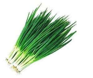 Jual Bibit Sayuran Daun Bawang jual benih daun bawang kecil 30 biji non retail bibit