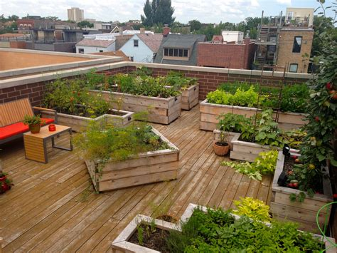 city rooftop vegetable garden designed by botanical