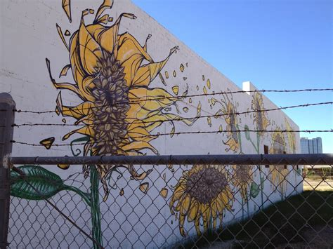 paperturtle phoenix graffiti art