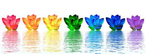 nh fiori flowers chakras with significato dei colori