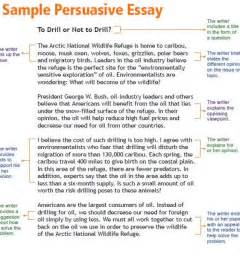 How To Write An Essay Samples How To Write An Essay Example