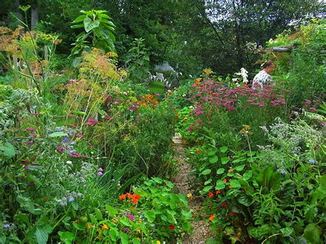 garden path ideas creative garden path ideas garden edging ideas