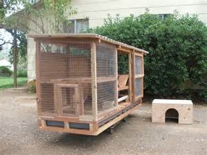 Rabbit Hutch For Flemish flemish rabbit hutch bunny board