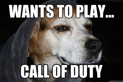 Call Of Duty Dog Meme - stoned dog memes quickmeme