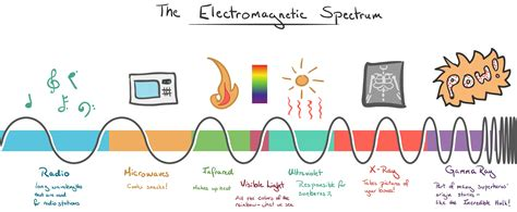 electromagnetic spectrum visible light electromagnetic spectrum spider diagram images how to