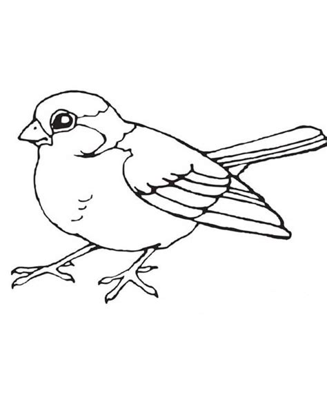 Coloring Pages Of A Bird Printable Bird Coloring Pages Coloring Me by Coloring Pages Of A Bird