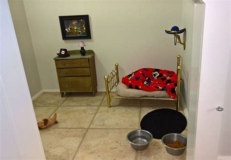 dog bedroom this woman built her dog a bedroom under the stairs and