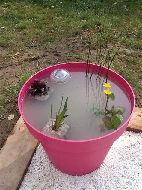 un mini jardin aquatique un grand pot de fleur aux couleurs tendances quelques petites
