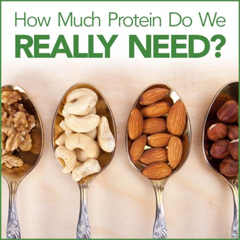What Does Much Protein Do How Much Protein Do We Really Need