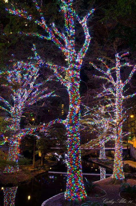 christmas lights in san antonio texas 147 best outdoor christmas lighting images on pinterest