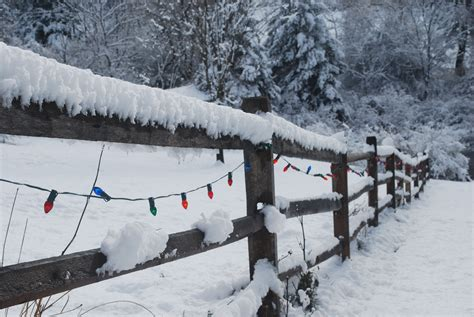 christmas lights on fence file christmas lights strung on snow covered fence jpg