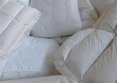 cuscino di piume cinelli piume e piumini cuscini per il mondo dell arredamento