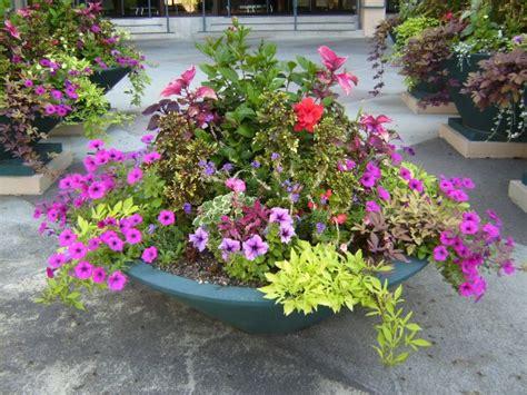 Garden Arrangement Ideas 30 Unique Garden Design Ideas