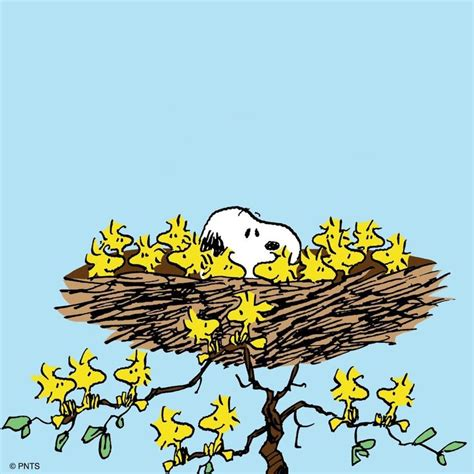 722 best images about i love snoopy and the gang on pinterest