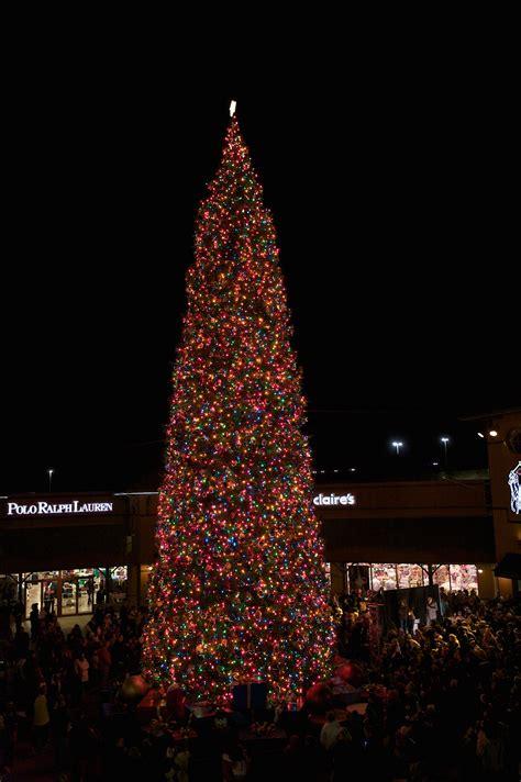 collection anthem christmas tree lighting photos