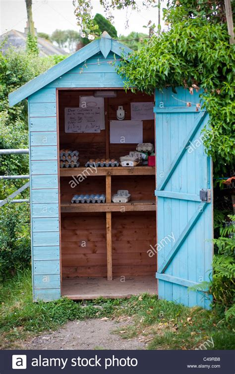 small rural business in garden shed selling eggs start a
