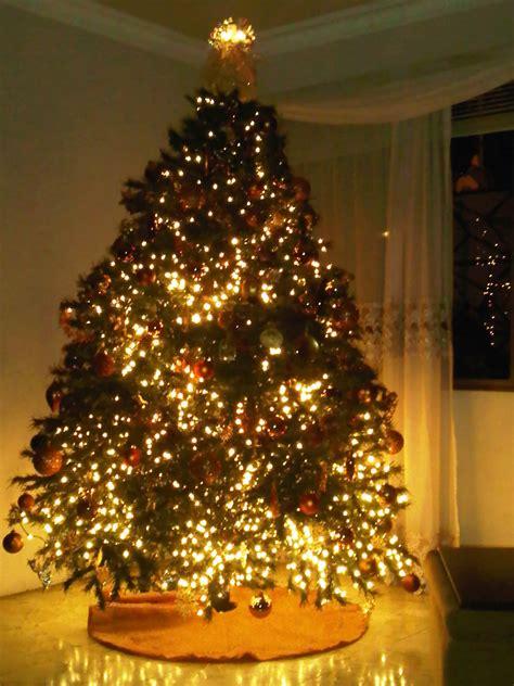 navidad luz gabriela rodr 237 guez entre 201 l y nosotros