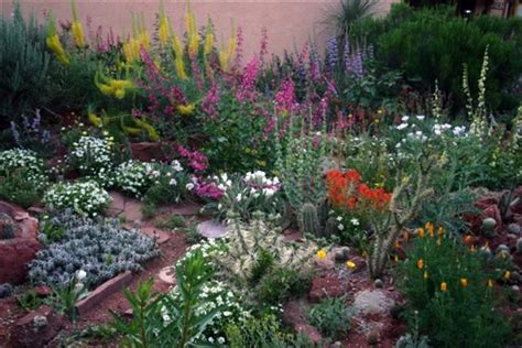 Colorado Vegetable Gardening Sustainable Landscaping Can Save Money And Time Yourhub