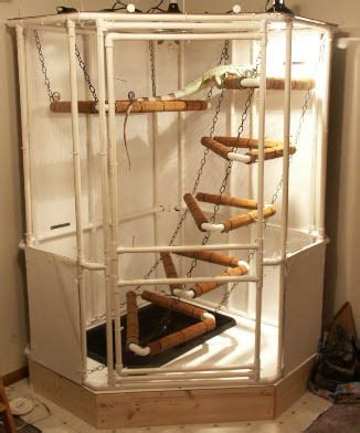 Cheap Home Decorations For Sale by Indoor Iguana Cage How To Build An Indoor Iguana Cage