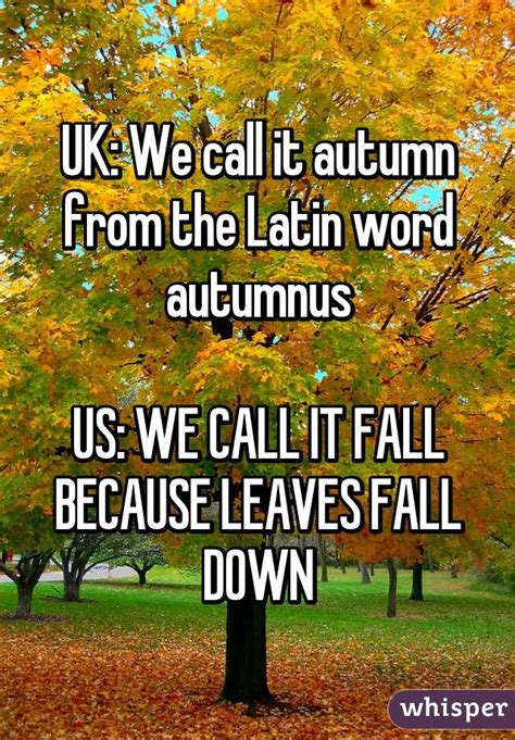 Fall Meme - 1000 ideas about fall humor on pinterest coffee quotes