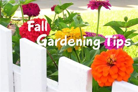vegetable gardening in colorado october gardening tips in colorado