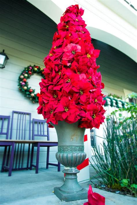 25 best ideas about poinsettia tree on pinterest