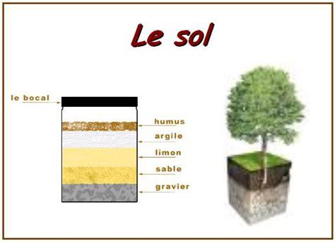 Le De Sol by Le Sol Vive Les Svt Les Sciences De La Vie Et De La