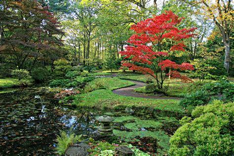 japanischer garten amsterdam fondos de pantalla pa 237 ses bajos parque estanque den haag