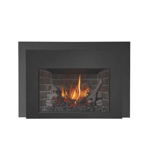 Napolean Fireplace Inserts by Napoleon Xir3nsbdeluxe Gas Fireplace Insert At