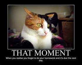 Motivational Memes - that moment motivational poster meme by generaldusk on