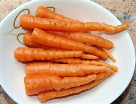 Benih Pepaya California Raja Seed 1 Pack benih wortel finger 25 biji non retail bibitbunga