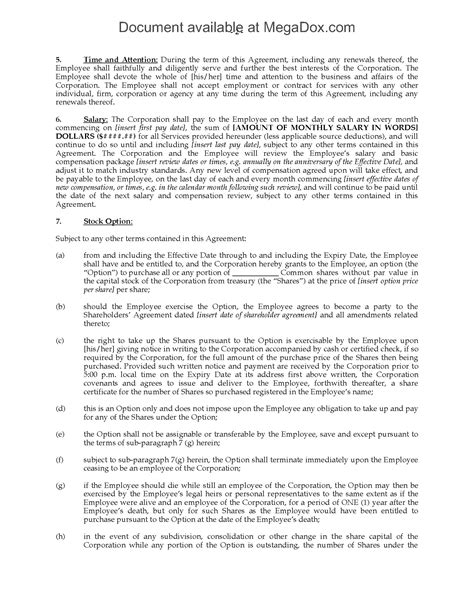 ceo employment contract template ontario employment agreement for ceo position
