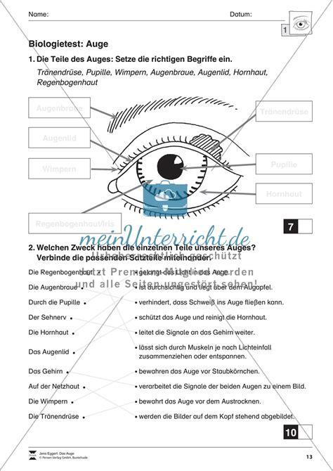 Beschriftung Des Auges by Test Zu Funktion Und Aufbau Des Auges Meinunterricht