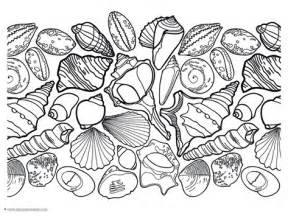 seashell color printable seashell coloring pages for kids cool2bkids sea