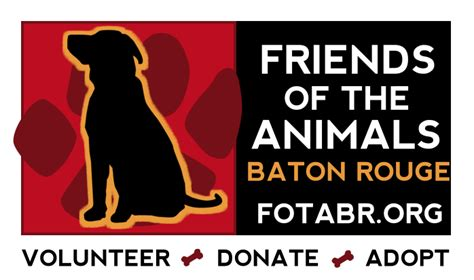 the dog adoption house baton rouge friends of the animals baton rouge petfinder com