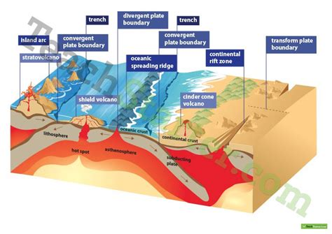 earthquakes diagram earthquake tectonic plates geology diagram poster