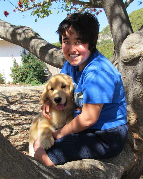 companion dogs service companion dogs of america
