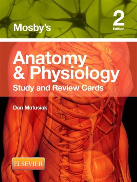 mosby s anatomy coloring book answers mosby s anatomy physiology study and review cards