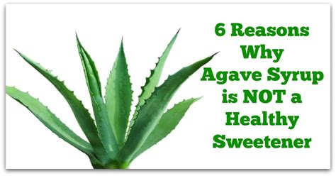 what is benefits of agave nectar for black women hair 6 reasons why agave syrup is not a healthy sweetener