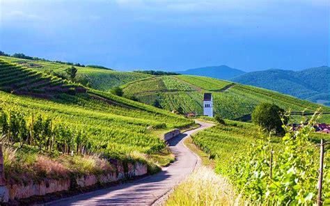 chambres d hotes alsace route des vins route des vins d alsace pfaffenheim escapades de charme